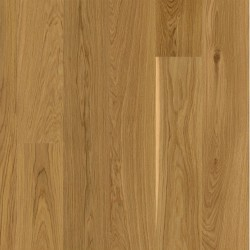 Oak Andante