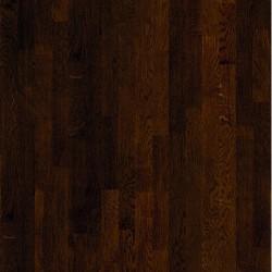 Oak Cordoba